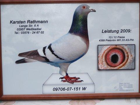Rathmannék díjnyerője
